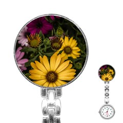 Beautiful Colourful African Daisies  Stainless Steel Nurses Watches
