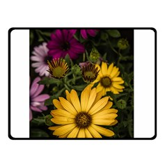 Beautiful Colourful African Daisies  Double Sided Fleece Blanket (small)