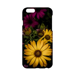 Beautiful Colourful African Daisies  Apple Iphone 6/6s Hardshell Case