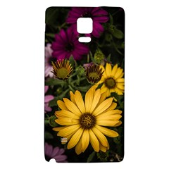Beautiful Colourful African Daisies  Galaxy Note 4 Back Case