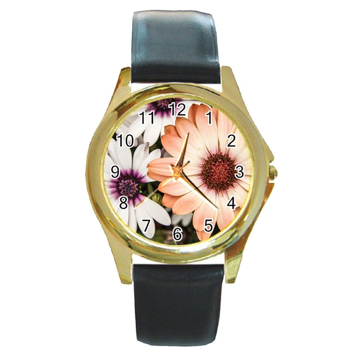 Beautiful Colourful African Daisies Round Gold Metal Watches