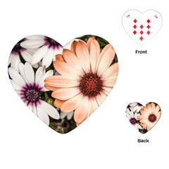 Beautiful Colourful African Daisies Playing Cards (Heart)