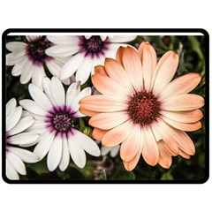 Beautiful Colourful African Daisies Fleece Blanket (large)