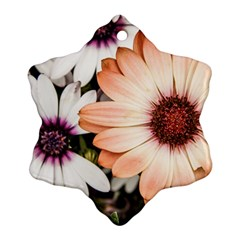 Beautiful Colourful African Daisies Snowflake Ornament (2-Side)