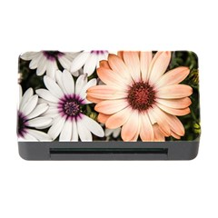 Beautiful Colourful African Daisies Memory Card Reader with CF