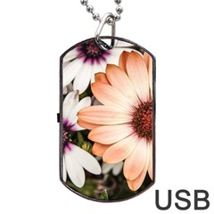 Beautiful Colourful African Daisies Dog Tag USB Flash (Two Sides)