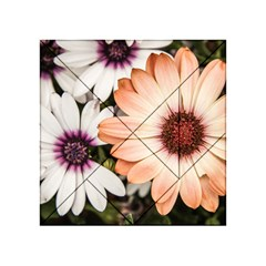 Beautiful Colourful African Daisies Acrylic Tangram Puzzle (4  X 4 )