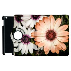 Beautiful Colourful African Daisies Apple iPad 2 Flip 360 Case