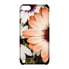 Beautiful Colourful African Daisies Apple iPod Touch 5 Hardshell Case with Stand
