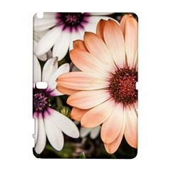 Beautiful Colourful African Daisies Samsung Galaxy Note 10.1 (P600) Hardshell Case