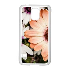 Beautiful Colourful African Daisies Samsung Galaxy S5 Case (White)