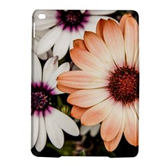 Beautiful Colourful African Daisies iPad Air 2 Hardshell Cases