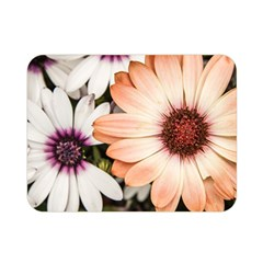 Beautiful Colourful African Daisies Double Sided Flano Blanket (Mini)