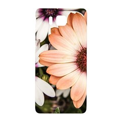 Beautiful Colourful African Daisies Samsung Galaxy Alpha Hardshell Back Case