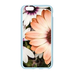 Beautiful Colourful African Daisies Apple Seamless iPhone 6/6S Case (Color)