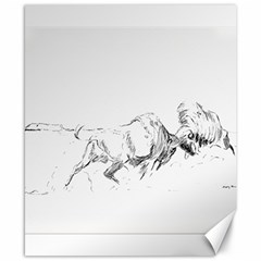 Buffalo / Bison Gift Canvas 8  X 10