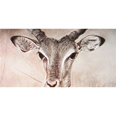 Antelope horns YOU ARE INVITED 3D Greeting Card (8x4)