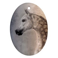 Grey Arabian Horse Oval Ornament (two Sides)
