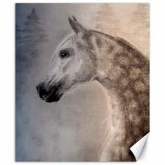 Grey Arabian Horse Canvas 20  x 24