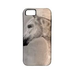 Grey Arabian Horse Apple Iphone 5 Classic Hardshell Case (pc+silicone)