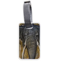 In the Mist Luggage Tags (Two Sides)