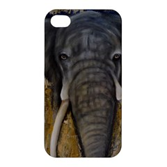 In the Mist Apple iPhone 4/4S Premium Hardshell Case