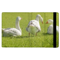 Group of White Geese Resting on the Grass Apple iPad 3/4 Flip Case