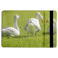 Group of White Geese Resting on the Grass iPad Air 2 Flip