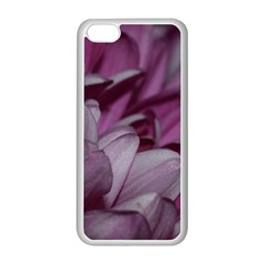 Purple! Apple iPhone 5C Seamless Case (White)