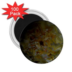 Yellow Flower 2.25  Magnets (100 pack)