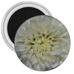 White Flowers 3  Magnets