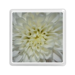 White Flowers Memory Card Reader (Square)
