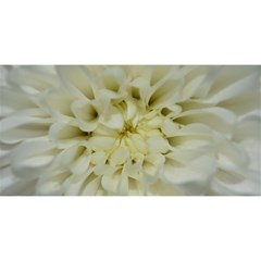 White Flowers You Are Invited 3d Greeting Card (8x4)