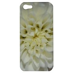 White Flowers Apple iPhone 5 Hardshell Case
