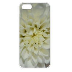White Flowers Apple iPhone 5 Seamless Case (White)