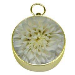 White Flowers Gold Compasses