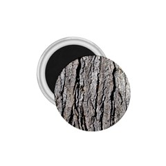 Tree Bark 1 75  Magnets