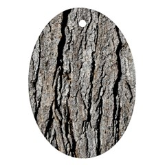 Tree Bark Ornament (oval)