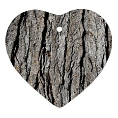 Tree Bark Ornament (heart)