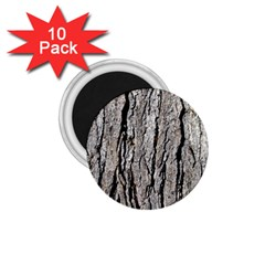 Tree Bark 1 75  Magnets (10 Pack)