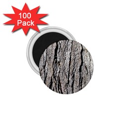 Tree Bark 1 75  Magnets (100 Pack)
