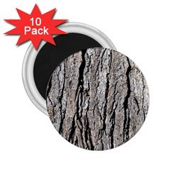 Tree Bark 2 25  Magnets (10 Pack)