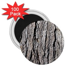 Tree Bark 2 25  Magnets (100 Pack)