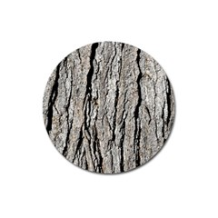 TREE BARK Magnet 3  (Round)