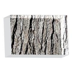 TREE BARK 4 x 6  Acrylic Photo Blocks
