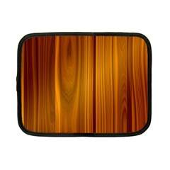 Shiny Striated Panel Netbook Case (small)