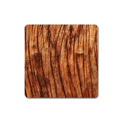 Old Brown Weathered Wood Square Magnet