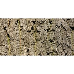 GREY TREE BARK YOU ARE INVITED 3D Greeting Card (8x4)