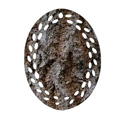 Douglas Fir Bark Ornament (oval Filigree)