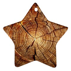CROSS SECTION OF AN OLD TREE Ornament (Star)